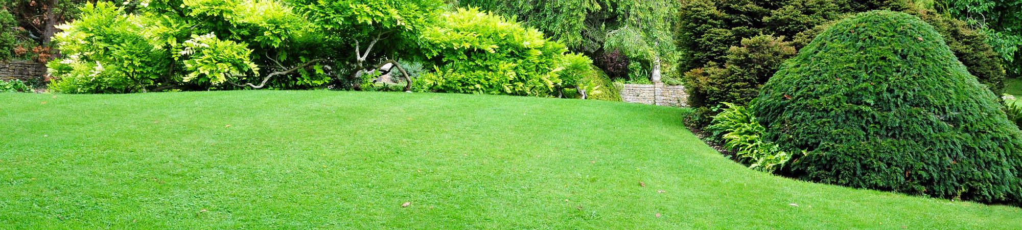Pest-Free Lawn Maintained By Lawn Insect Control In Edmond, OK